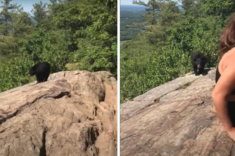 Vídeo: Una excursionista nombrada como 'Calm Queen' después de encontrarse con un oso negro
